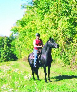 MS-MR-1-Buying a trail horse