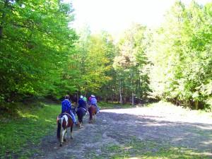 MS-MR-1-Trail riding1