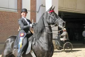 MS-MR-3-Big-E-Horse21